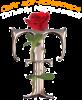 logo (43)